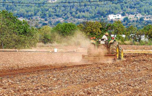 Un agricultor trabajando el campo ibicenco.
