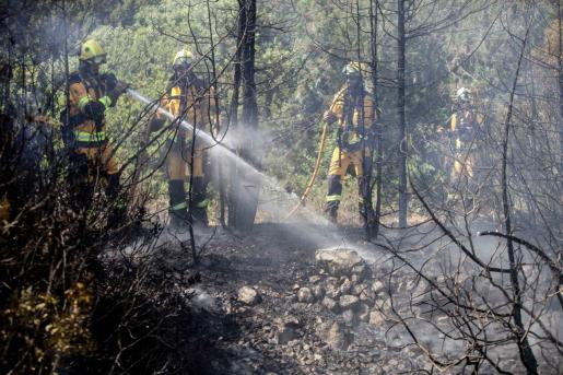 Un total de 40 efectivos sofocaron ayer el incendio que afectó a 15.000 metros cuadrados y obligó a desalojar una vivienda.