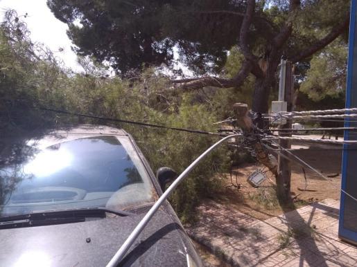 El incidente ha tenido lugar en la carretera de Cap Negret