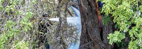 Un 'fuego perfecto' devora más de 12 hectáreas de terreno en Sant Llorenç