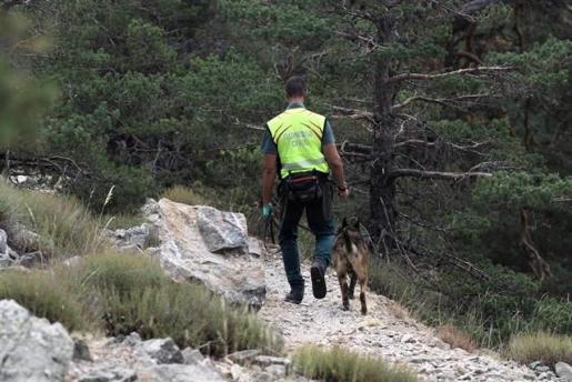 Acompañado de un perro de rastreo, un agente de la Guardia Civil continúa con los trabajos de búsqueda de la esquiadora y medallista olímpica, Blanca Fernández Ochoa, desaparecida el pasado 26 de agosto.