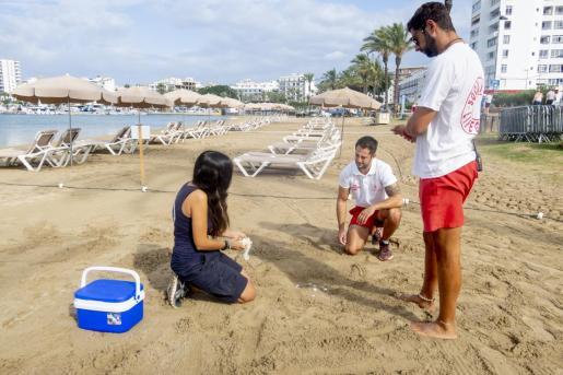 Las situaciones simuladas consistieron en el desove de una tortuga y en el rescate de una colchoneta a la deriva en las playas de s'Arenal y de es Pouet, en Sant Antoni.