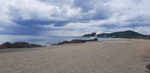Sant Josep inicia los trabajos para devolver la posidonia retirada a las playas.