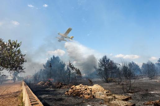 Incendio forestal en Cala de Bou el pasado mes de agosto.