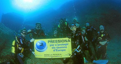 Imagen de archivo de una campaña a favor de los tiburones.