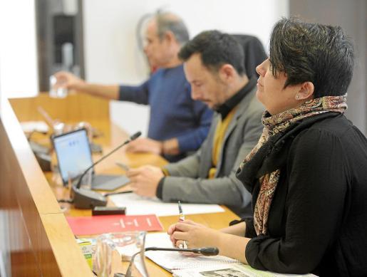 La concejala de Urbanismo, Elena López, defendió la medida frente a las críticas de la oposición.