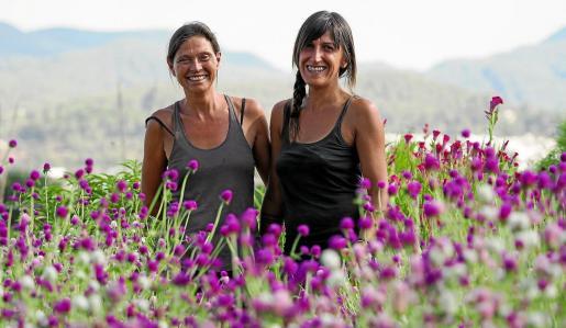 Blanca y Linda cultivaron este año zinias, amarantos, perpetuas o crestas de gallo, entre otras flores.