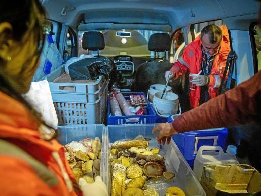 La furgoneta reparte, básicamente, sopas calientes y productos de bollería diversos.