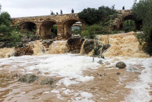 Imagen del río de Santa Eulària.