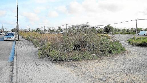 Terrenos en los que se ubicará el nuevo centro de baja exigencia de Es Gorg.