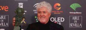 'Dolor y Gloria' triunfa en los Premios Goya 2020