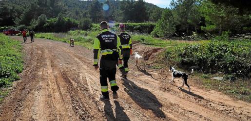 El simulacro consistió en la localización de una persona desaparecida en el bosque de Sa Coma, que se dividió en cinco zonas, una para cada equipo canino.