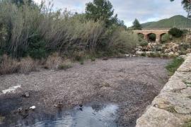 Las reservas hídricas de Ibiza caen hasta el 55% en enero