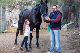 Desaparece un caballo en es Cubells y aparece en Mallorca con el pelo teñido para camuflarlo