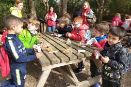 Alumnes d'Infantil del CEIP Maria de la Salut varen visitar Natura Parc