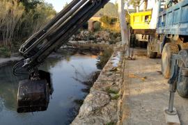 La limpieza del río de Santa Eulària, en imágenes (Fotos: Vicent Montserrat).