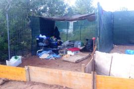 La Policía Local de Ibiza desmantela un asentamiento ilegal en Cas Serres