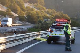 Un hombre de 31 años muere atropellado mientras caminaba por la autopista