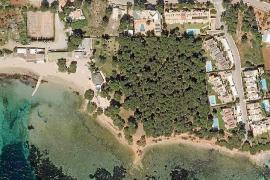 Santa Eulària protegerá 17.300 metros cuadrados de pinar en Cala Pada