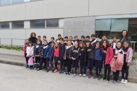 Alumnes de 4rt A i B de primària del Col·legi La Salle de Palma, varen visitar Grup Serra i Agromallorca
