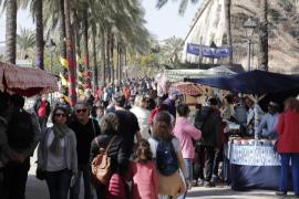 Mercadillo del Dia de les Illes Balears