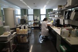 Las analíticas de los hijos de la afectada con coronavirus en Mallorca dan negativo
