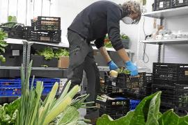 Los productores locales incrementan sus ventas durante el estado de alarma
