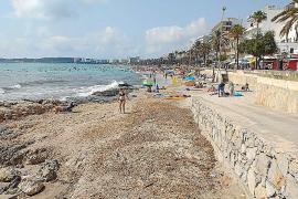 Los turistas están dispuestos a pagar 1,23 euros al día por salvar un metro de playa
