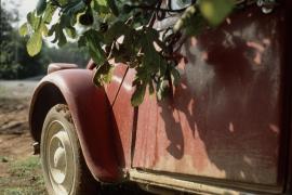 Sant Josep sancionará con multas de hasta 45.000 euros a los propietarios que abandonen sus vehículos en el municipio