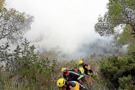 Extinguido un incendio forestal en una pinada de Cala Llonga