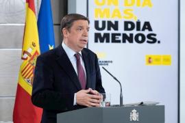 El Gobierno flexibilizará la contratación en el campo de inmigrantes y desempleados