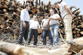 1.500 toneladas de biomasa extraídas de 150 hectáreas