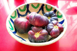 Tomates azules: Bitácora de una distopía, por Montse Monsalve