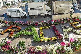 Flores solidarias mientras que 'Cristóbal' se mueve en patinete