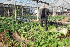 Tierra sana y menos CO2 en Mallorca