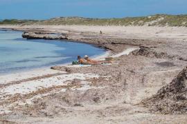 El Govern aclara que no se permitirá el baño en las playas hasta la fase 3
