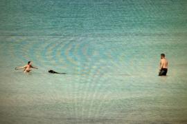 El Consell de Formentera espera una respuesta por escrito ante sus dudas referentes a las playas