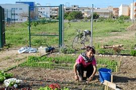 Rosalina Marí, propietaria de Can Moreno, da lecciones para montar huertos urbanos
