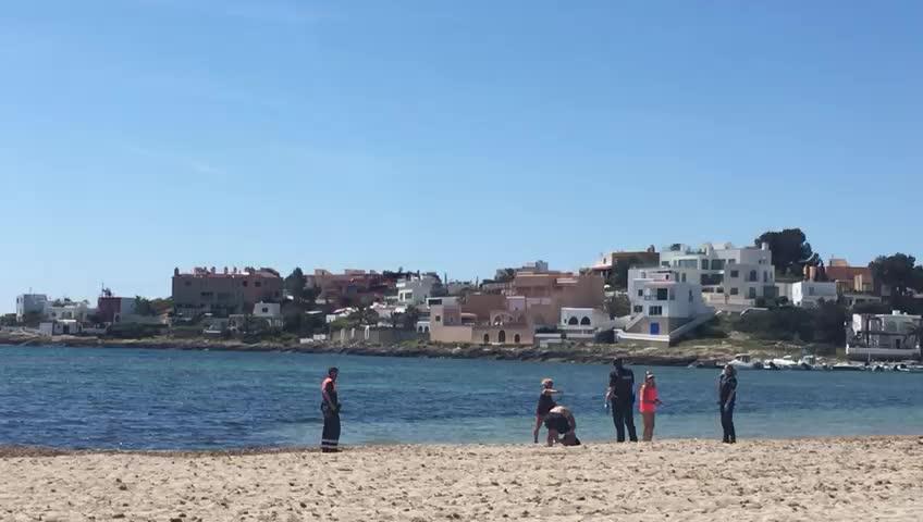 Desmadre y 'mataleón' en Ibiza