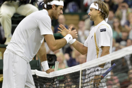 Ferrer se exhibe ante Del  Potro y se cita con Murray en Wimbledon