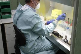 Baleares no registra ningún muerto por coronavirus en las últimas 24 horas y bajan los contagios