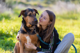 Sa Coma vuelve a abir para los paseos de perros con voluntarios