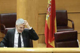 Interior admite que el cese de Pérez de los Cobos fue por incumplir la comunicación de actuaciones