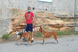 Vuelven los voluntarios y la alegría a los «peludos» del centro de protección animal de Sa Coma
