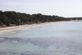 Ibiza Preservation exige que la sostenibilidad sea prioritaria en la recuperación económica