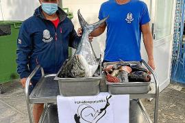 Jornada solidaria de pesca submarina de CAS S'Embarcador a beneficio de Cáritas