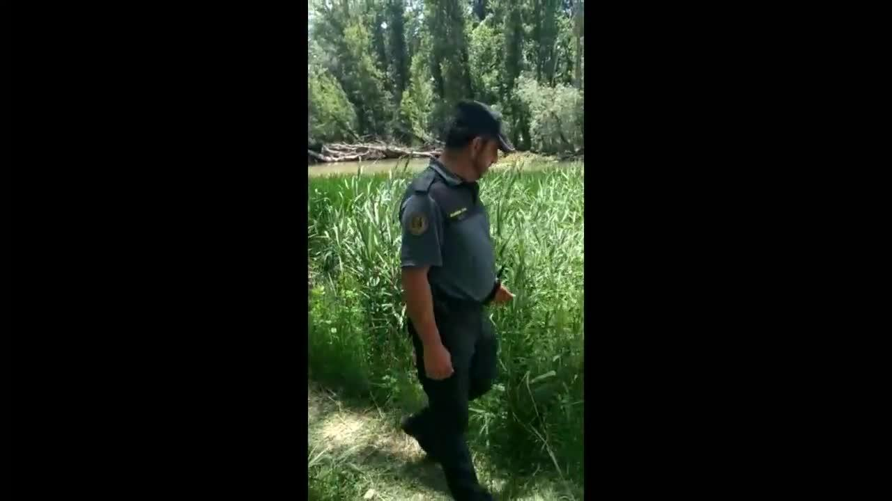 Buscan a un cocodrilo de 250 kilos en el río Duero