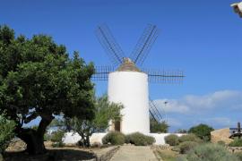 Plan de actuación especial para renovar sa Punta des Molí