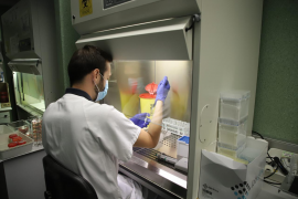 Baleares suma dos nuevos casos de coronavirus