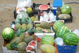 24 cajas de fruta requisada a vendedores ambulantes, para Cáritas